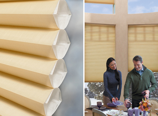 Hunter Douglas Duette Architella Honeycomb Shades