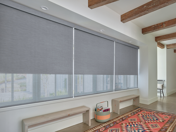 Designer Roller Shades with Duolite®